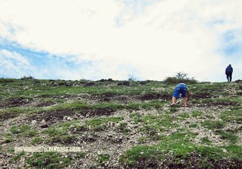 bukit lamreh, jejak sejarah Aceh, asal usul kesultanan Aceh